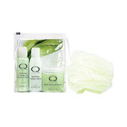 Smart Spa by Qtica Smart Spa White Tea Home Spa Kit